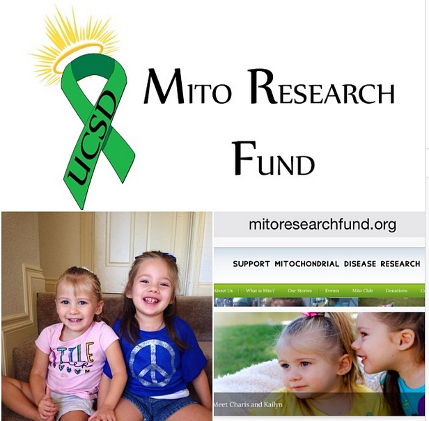 MITO Research Fund